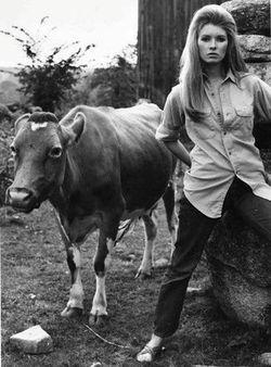 Martha Stewart4