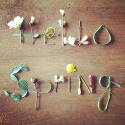 SpringBlog5